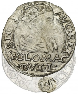 Zygmunt II August, Grosz na stopę polską Tykocin 1566 - BARDZO RZADKI, Jastrzębiec
