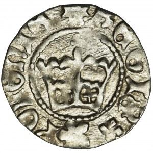 Jan I Olbracht, Półgrosz Kraków bez daty