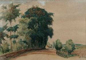 Jan RUBCZAK (1884-1942), Pejzaż z drogą
