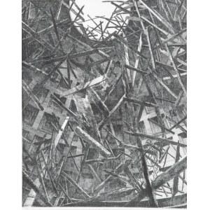 Dariusz Syrkowski (1966)