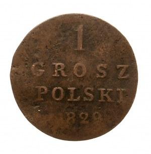 Królestwo Polskie, Mikołaj I 1825-1855, grosz polski 1829 F-H, Warszawa