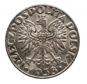 Polska, Generalna Gubernia 1939-1945, 50 groszy 1938, Warszawa, żelazo niklowane.
