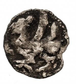 Pomorze Zachodnie, Słupsk- miasto, denar XIV - XV w.