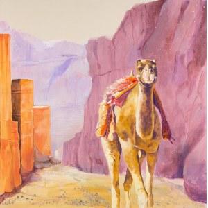 Mariusz Kitowski, In Petra Alone