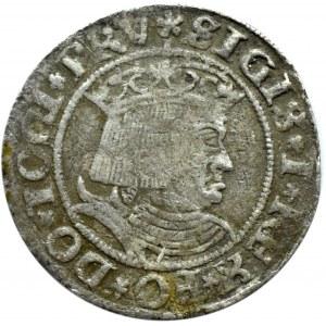 Zygmunt I Stary, grosz 1531, Toruń, PRU/PRUSS