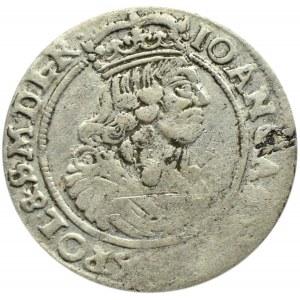 Jan II Kazimierz, szóstak 1664 AT, Bydgoszcz - kwiat i kropka między tarczami
