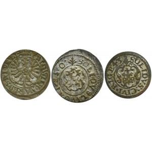 Prusy/Szwecja/Rzeczpospolita, lot 3 szelągów 1654, 1650, 1643, Królewiec/Ryga/Liwonia