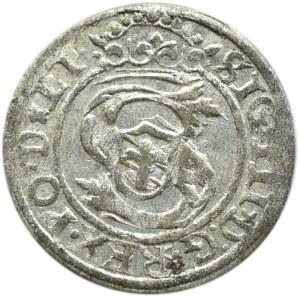 Zygmunt III Waza, szeląg, 1599, Ryga, ładny