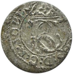Jan II Kazimierz, szeląg litewski 1652, Wilno, herb Gozdawa
