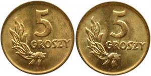 Polska, RP, 5 groszy 1949, Bazylea, dwa wspaniałe rewelacyjne egzemplarze (2)