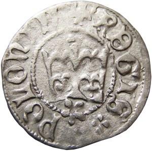 Kazimierz IV Jagiellończyk, półgrosz, Kraków, odwrócone litery