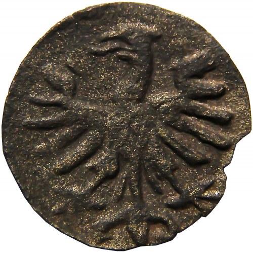 Zygmunt I Stary, denar koronny z rozetą w koronie, Kraków (R4)