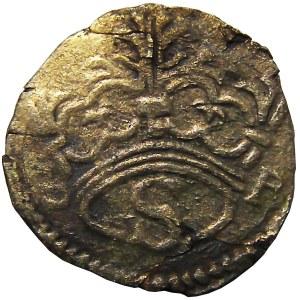 Zygmunt I Stary, denar koronny z inicjałem króla S, Kraków (R6)