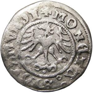 Zygmunt I Stary, półgrosz koronny 1511, Kraków