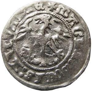 Zygmunt I Stary, półgrosz 1512, skrócona data (1Z), Wilno