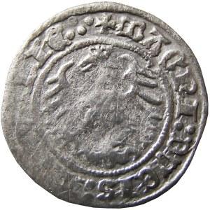 Zygmunt I Stary, półgrosz 1515, Wilno, SIGIS:MVNDI (RRR)
