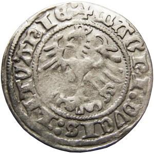 Zygmunt I Stary, półgrosz 1517, Wilno, (RRR)