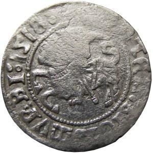 Zygmunt I Stary, półgrosz 1518, Wilno, MONTEA (RRR)