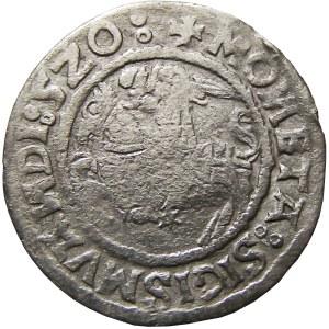 Zygmunt I Stary, półgrosz 1520, Wilno, SIGISMVANDI 5Z0 (RRR)