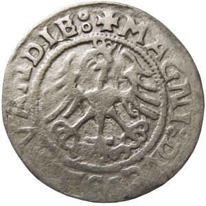 Zygmunt I Stary, półgrosz 1521, Wilno, LITVANDIE (RRR)