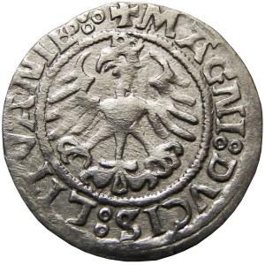 Zygmunt I Stary, półgrosz 1521, Wilno, przebitka (RRR)