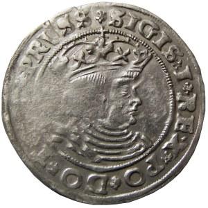 Zygmunt I Stary, grosz 1528, Toruń (R6)