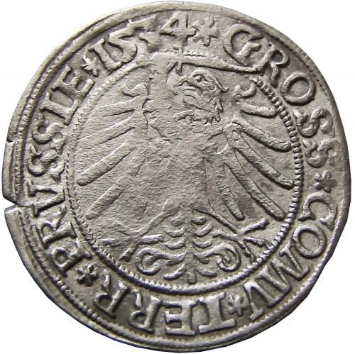 Zygmunt I Stary, grosz 1534, Toruń, rzadki typ popiersia