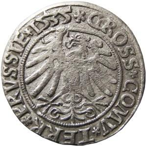 Zygmunt I Stary, grosz 1535, Toruń, PRVSSI/PRVSSIE