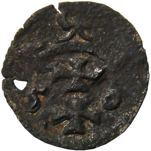Zygmunt II August, denar 1550, Gdańsk (R5)