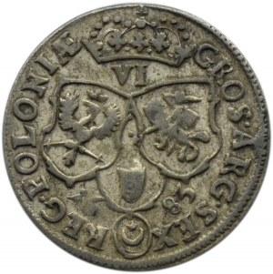 Jan III Sobieski, szóstak 1683 TLB, Bydgoszcz, herb Jelita, dziesięć klejnotów