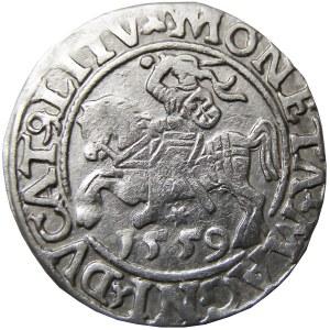 Zygmunt II August, półgrosz 1559, Wilno, CIEKAWY