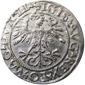 Zygmunt II August, półgrosz 1562, Wilno