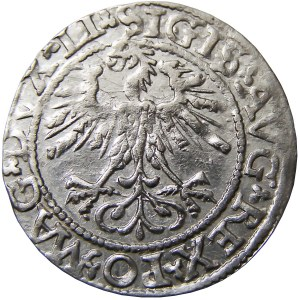Zygmunt II August, półgrosz 1562, Wilno (57)