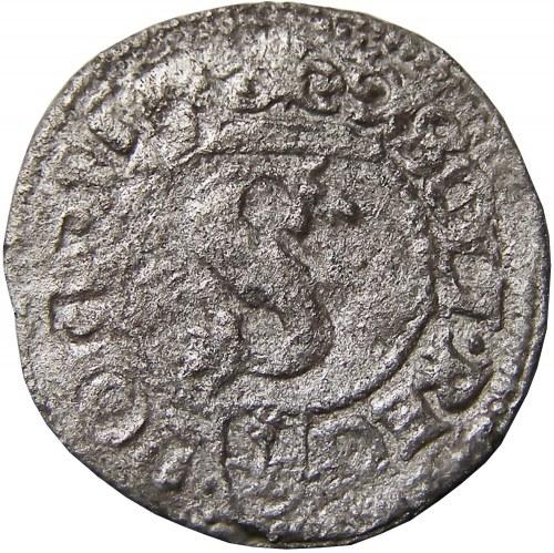Zygmunt III Waza, szeląg 1596, Wschowa
