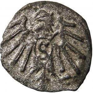 Prusy Książęce, Albrecht, denar pruski, Królewiec, (R3), ładny