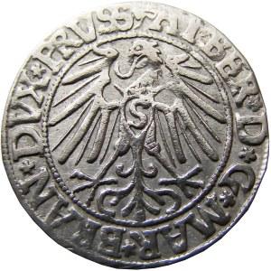 Prusy Książęce, Albrecht, grosz pruski 1546, Królewiec, ładny