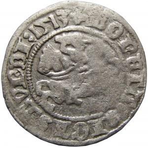 Zygmunt I Stary, półgrosz 1513, Wilno, pełna data - RRR