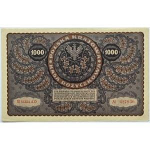 Polska, II RP, 1000 marek 1919, III seria AO, typ 5, piękne!