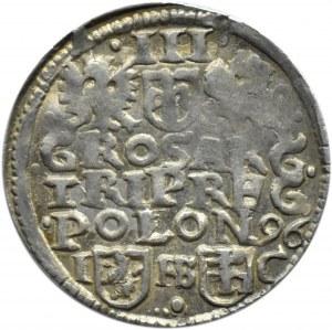 Zygmunt III Waza, trojak 1596, Bydgoszcz