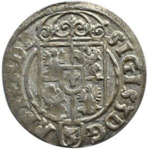 Zygmunt III Waza, półtorak 1623, herb Sas, Bydgoszcz