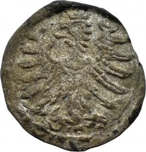 Zygmunt I Stary, denar bez daty, Kraków (R4)