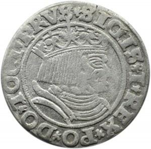 Zygmunt I Stary, grosz pruski 1531, Toruń, PRUS/PRUSS