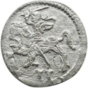 Zygmunt II August, dwudenar 1570, Wilno