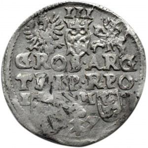 Zygmunt III Waza, trojak 1597, Poznań, odmiana z gałązką