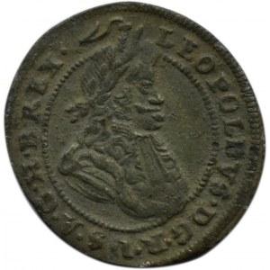 Śląsk, Leopold, krajcar 1701 CB, Brzeg- rzadka odmiana z kwiatkiem