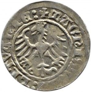 Zygmunt I Stary, półgrosz 1514, Wilno