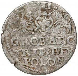Zygmunt III Waza, Trojak Anomalny bez daty - rzadki