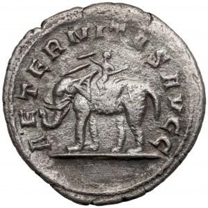 Filip I Arab (244-249 n.e.) Antoninian, Rzym - Rzadki rewers