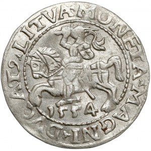Zygmunt II August, Półgrosz Wilno 1554 - rzadki rok