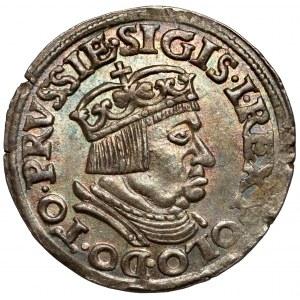 Zygmunt I Stary, Trojak Gdańsk 1536 - piękny